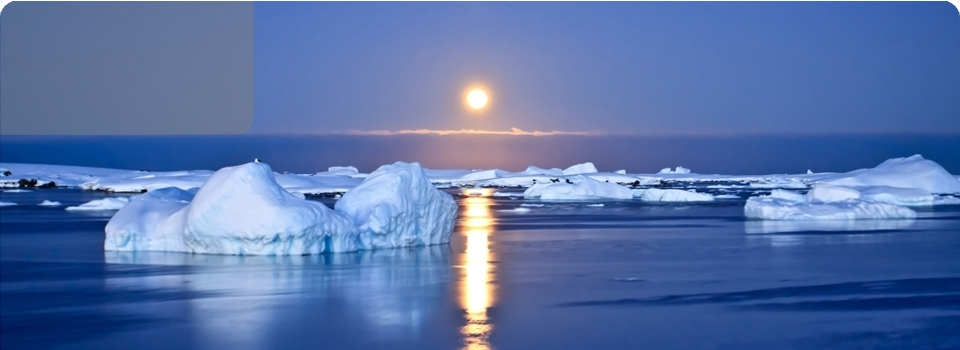Islanda  Aurore Boreali 2020 - ISLANDA - Aurore Boreali