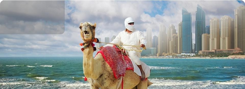 EXPO  DUBAI - Medio Oriente - Dubai