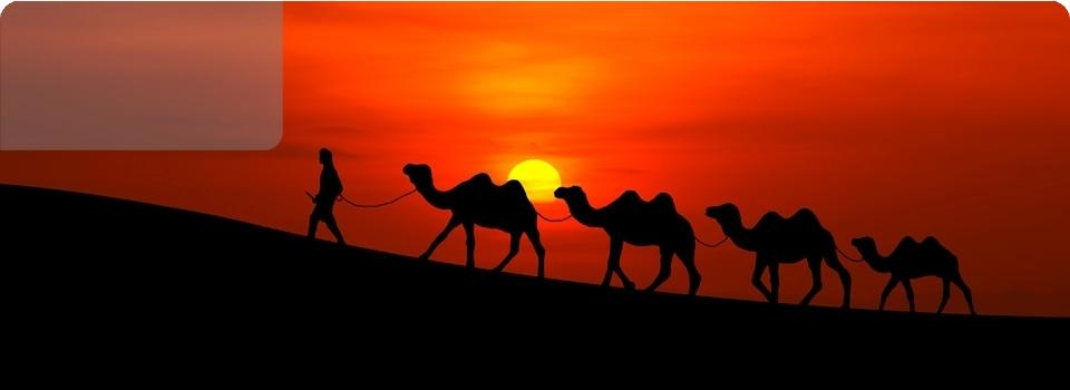 MAURITANIA   2020 - Africa - Mauritania