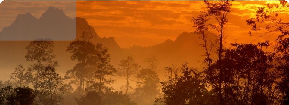 Thailandia   varie proposte - Oriente - Thailandia