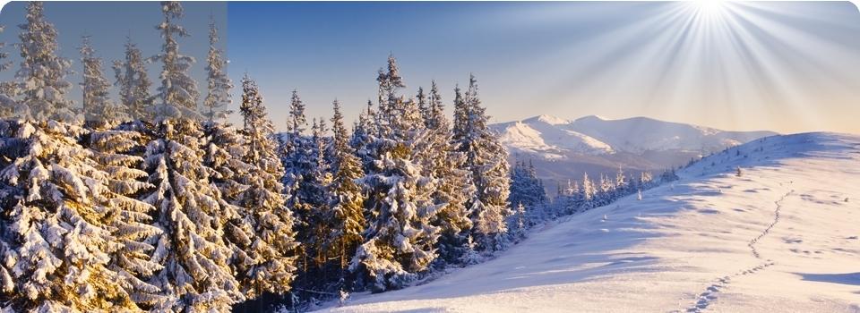 GENNAIO   NEVE  e benessere - Europa - Neve