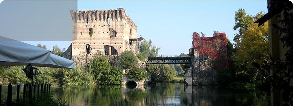 Navigando tra i fiori di Loto  a Grazia di Curtatone (Mn) - Italia - Fiori di Loto Grazie di Curtatone Mantova